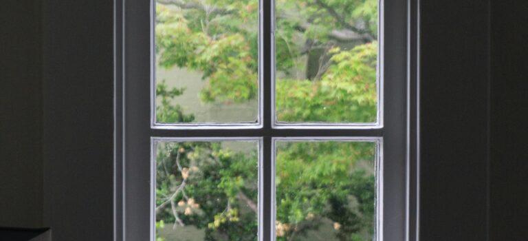 Vælg altid en miljøfokuseret vinduespudser